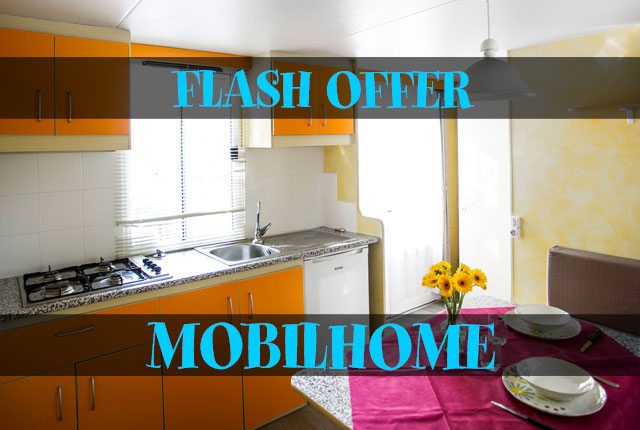 FLASH OFFER MOBILEHOME